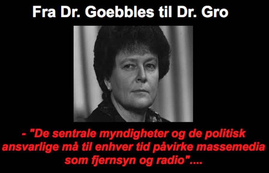 På nettstedet Menneskerettigheter.info sammenlignes Gro Harlem Brundtland med Hitlers propagandaminister Joseph Goebbels.
