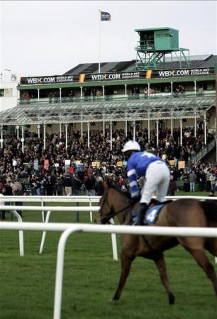 Hotels near Newcastle Racecourse