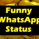 Whatsapp Status Videos Download – Funny Status