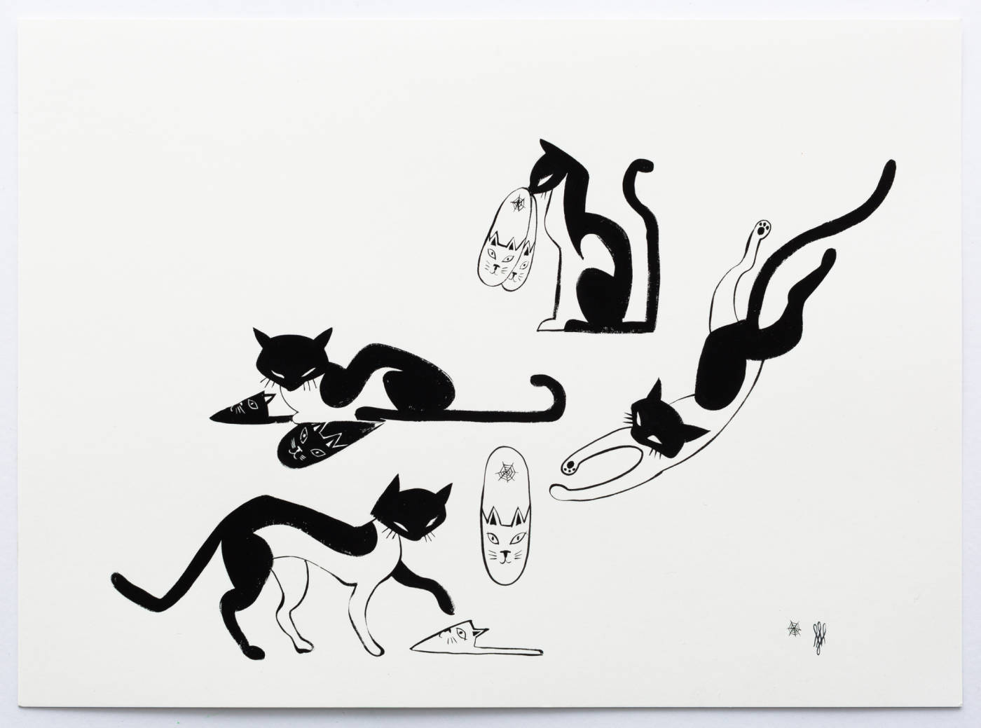 House Cats, Charlotte Olympia