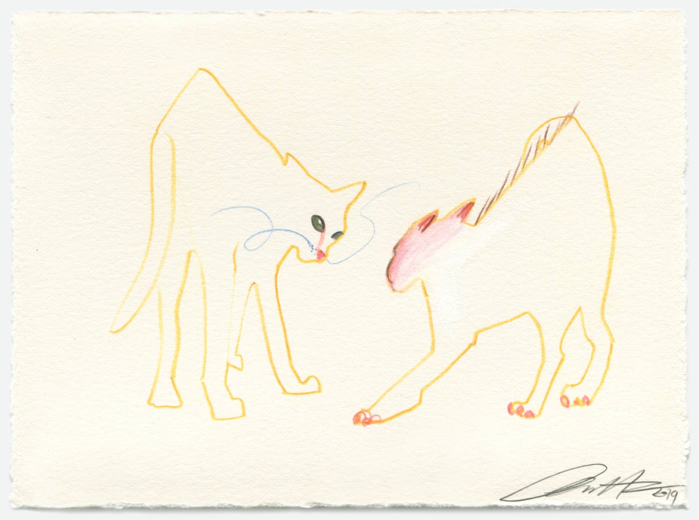 The Yellow Cats