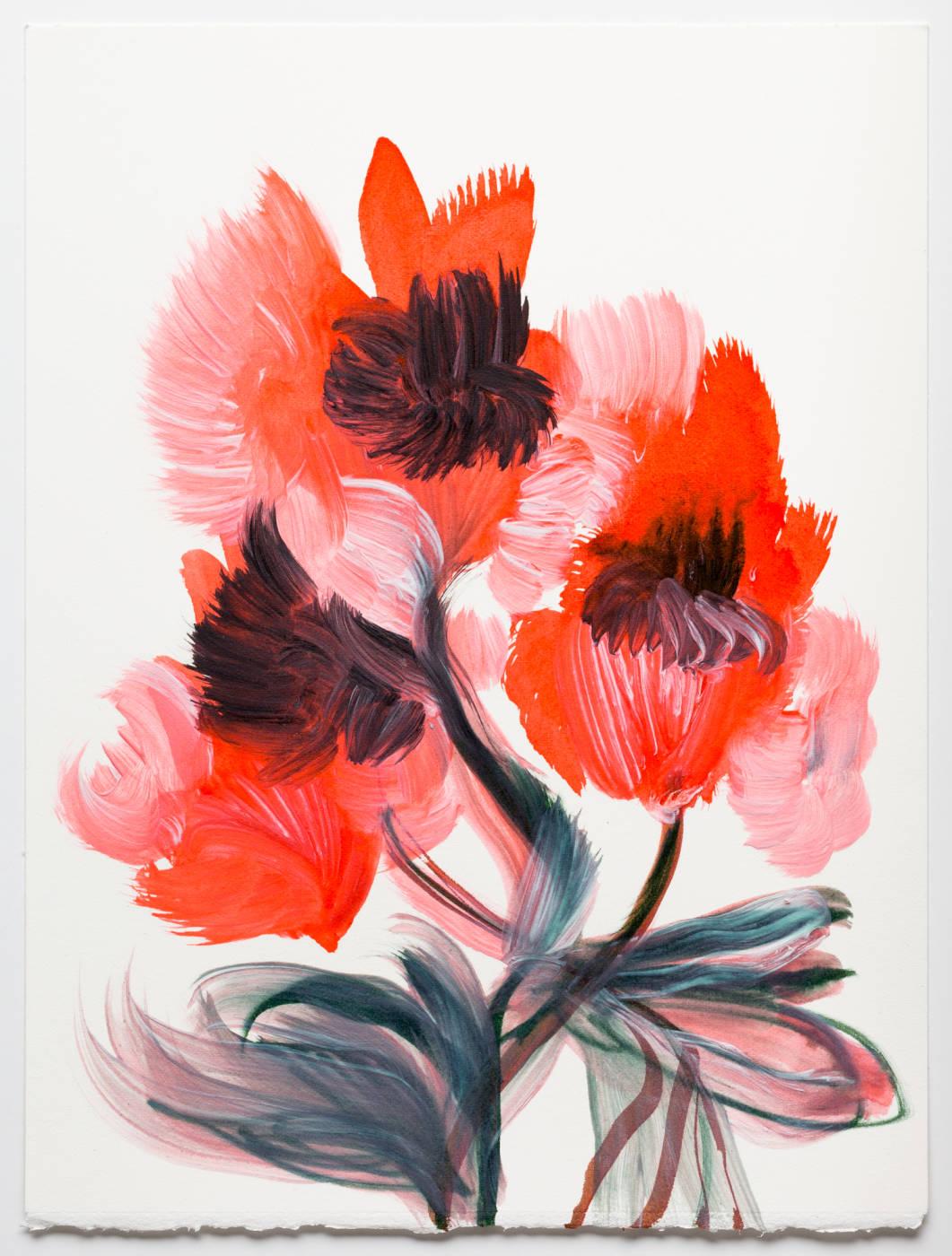 Coral Pink Flower 2