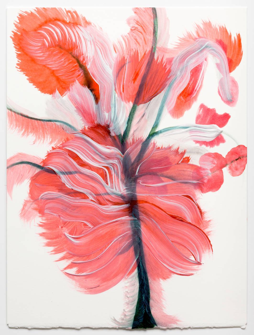 Coral Pink Flower 3