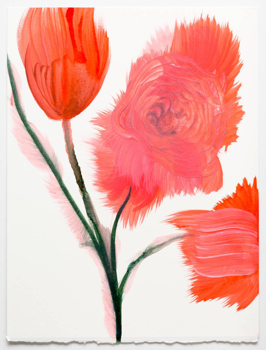 Coral Pink Flower 4