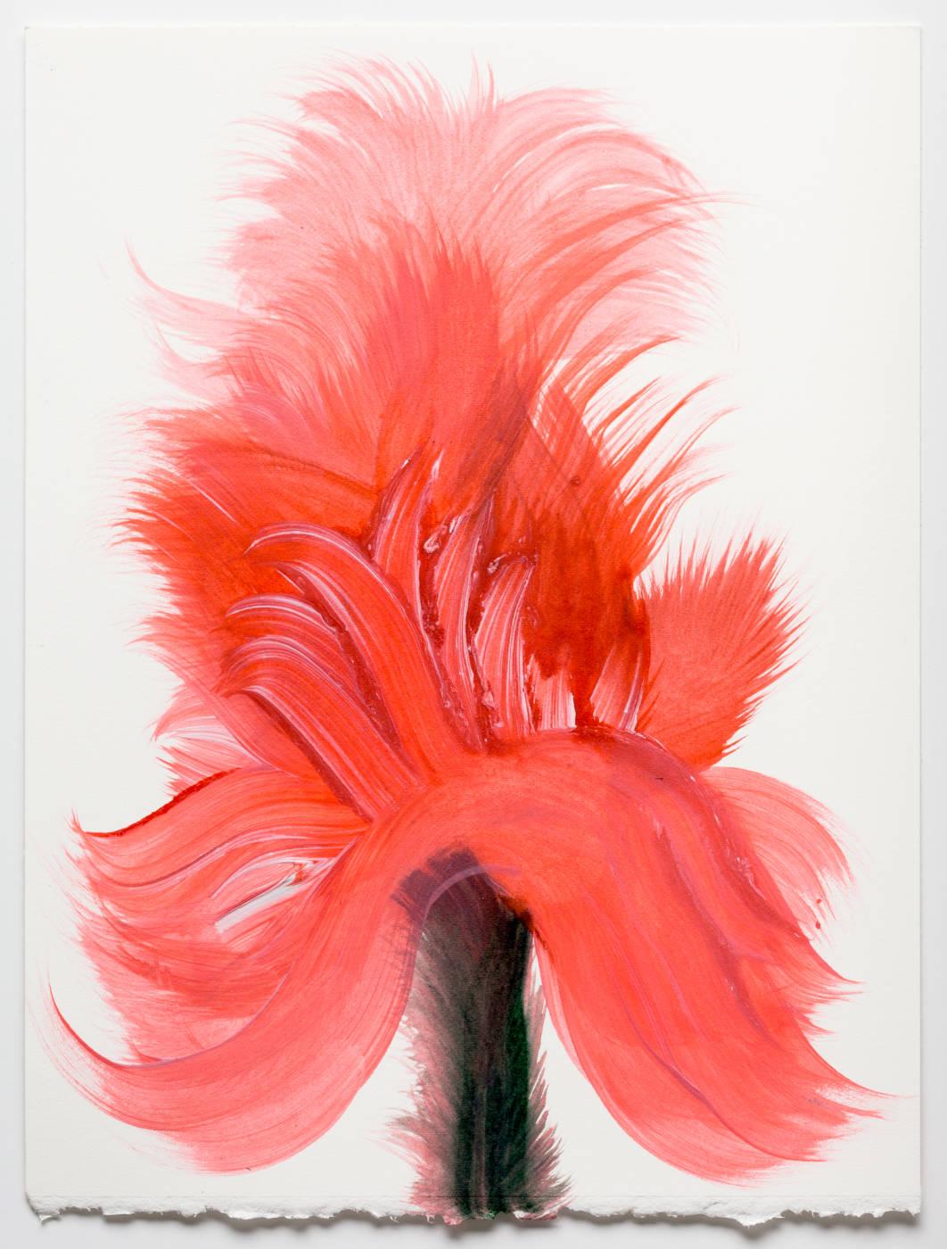 Coral Pink Flower 7