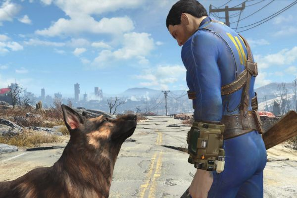 Dogmeat Look