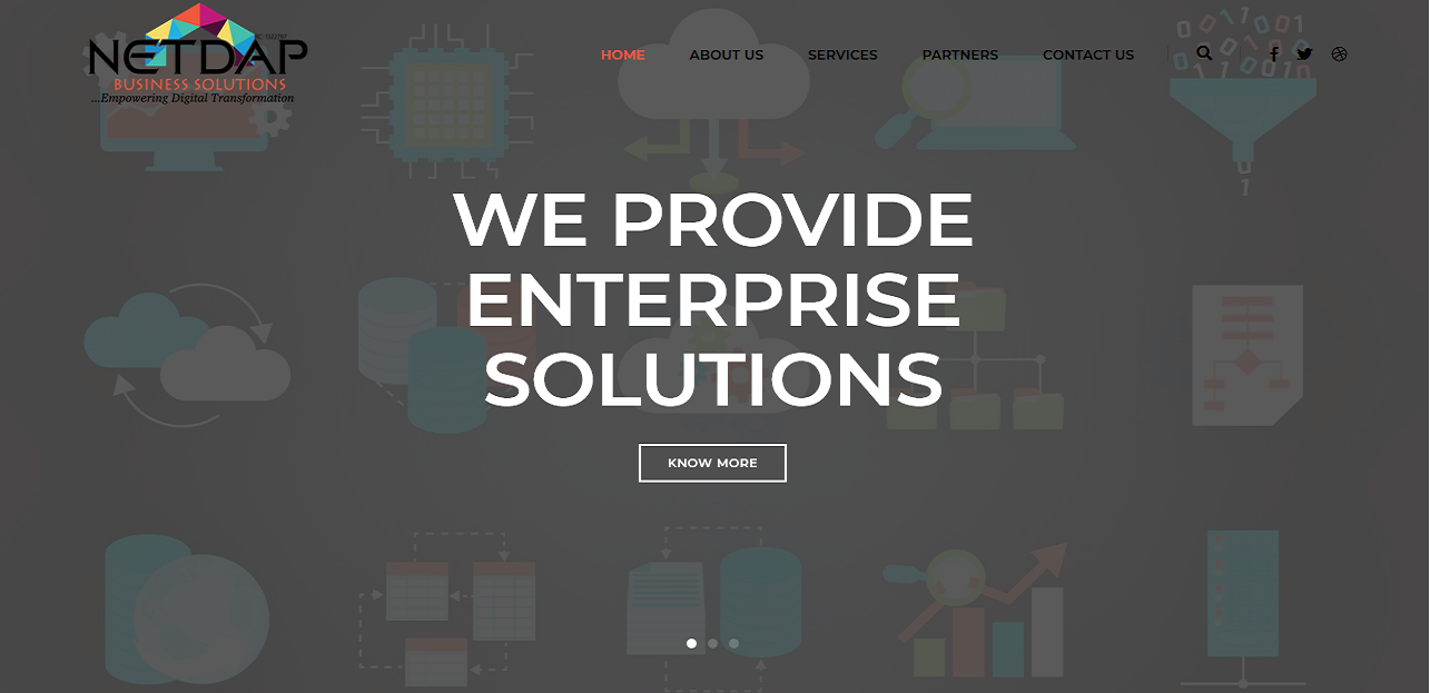 NETDAP Business Solutions thumbnail