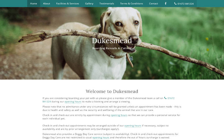 Frontpage view of Dukesmead Boarding Kennels & Cattery website.