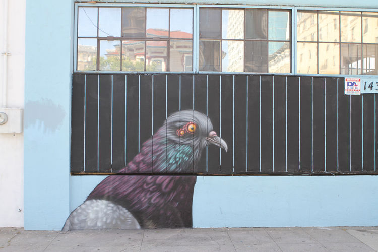 Artwork By ernest doty in Oakland (Nature)