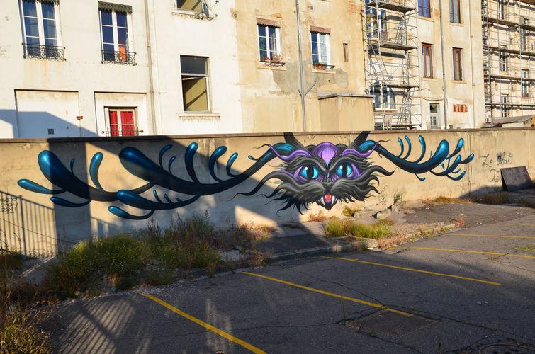 Œuvre Par Jeff Soto à Lyon