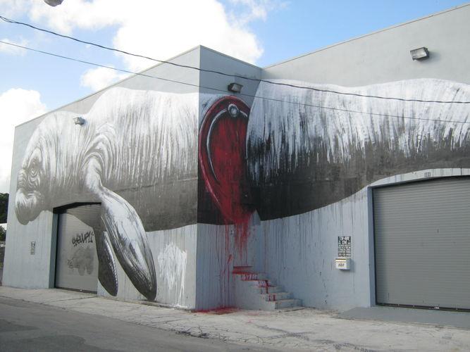 Œuvre Par Roa à Miami