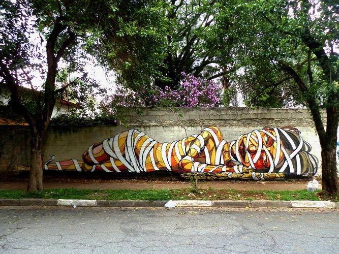 Œuvre Par Lake à São Paulo