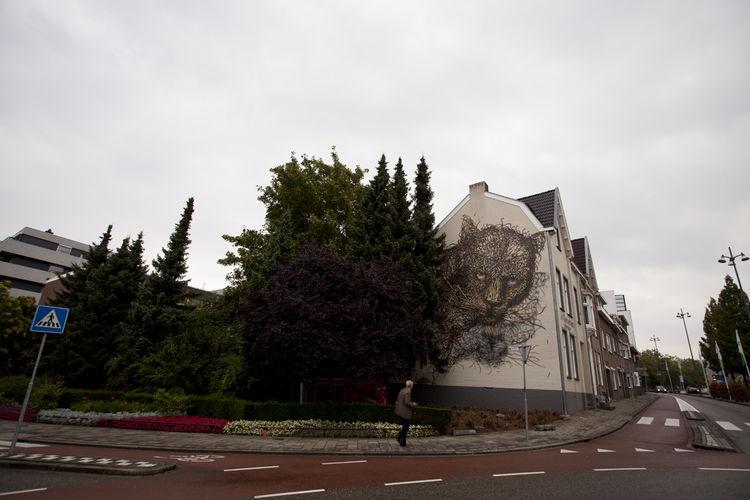 Artwork By DALeast in Haarlem