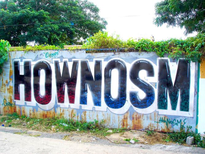 Œuvre  à Saint-Domingue