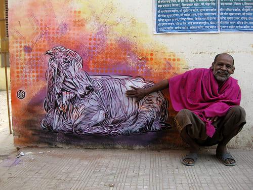 Artwork By C215 in New Delhi, Delhi