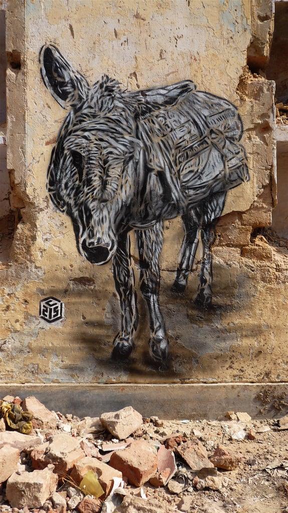 Artwork By C215 in Delhi, New Delhi