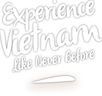 Vietnam Travel Booking Platform