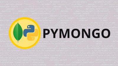 Python & Mongodb