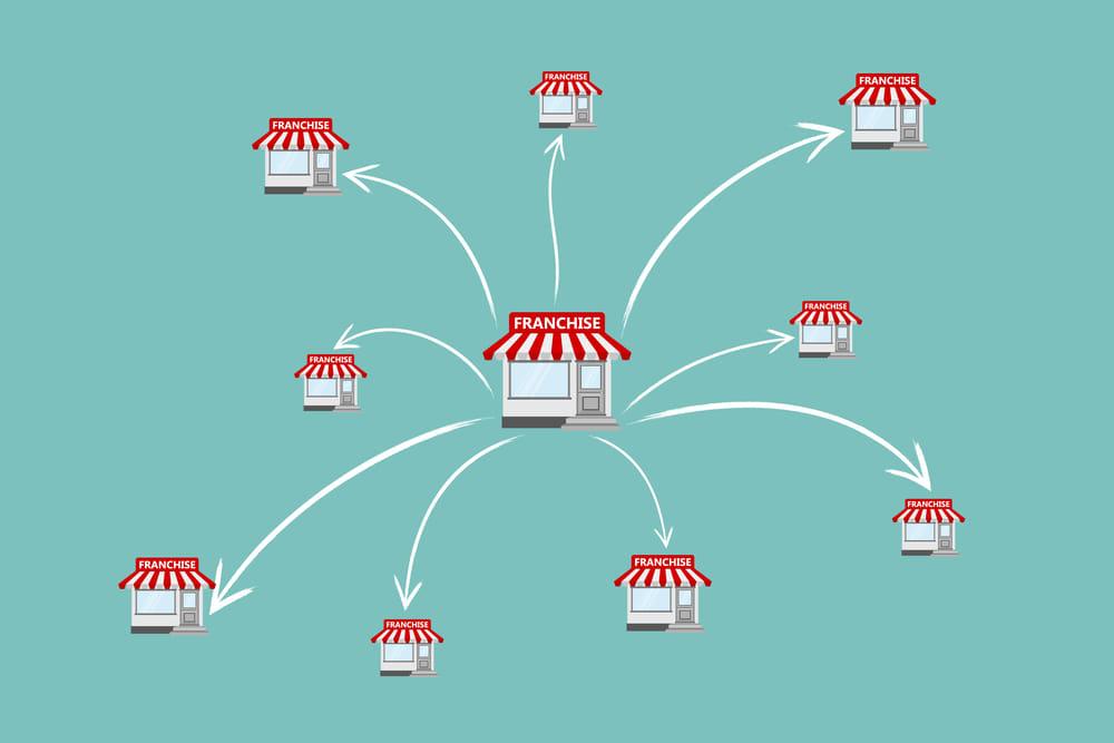 esempio di business plan azienda agricola
