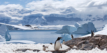 Save up to 20%*<br>on G Expedition tours<br>with G Adventures<br><br>Expires February 29, 2020