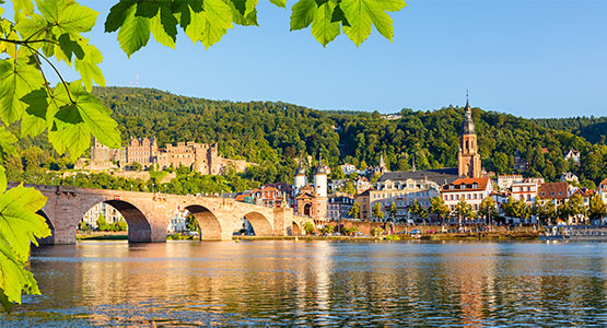 A TASTE OF THE RHINE<br>5-day river cruise from $2609*