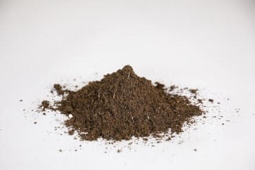 Vermont Compost Fort Vee™ Potting Soil