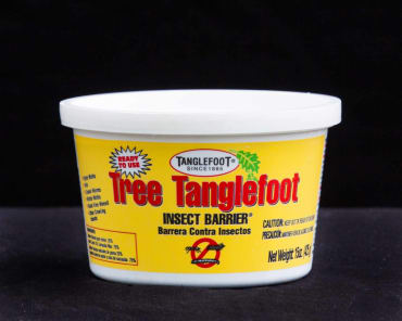Ready To Use Tree Tanglefoot® Insect Barrier®