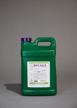 Regalia® Biofungicide