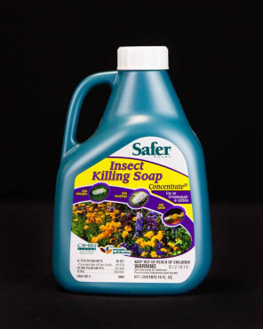 Safer® Insecticidal Soap Commercial Concentrate