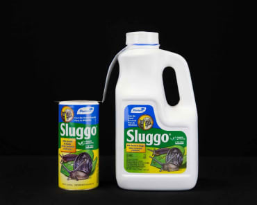 Monterey Sluggo®