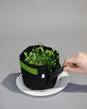 Transplanter Pot