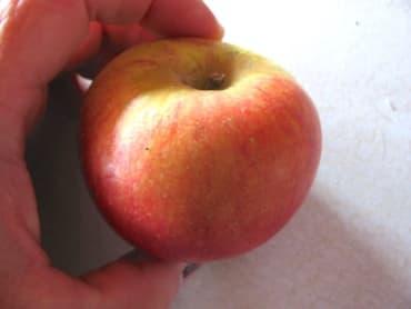 Fletcher Sweet