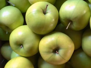 Sweet Sal