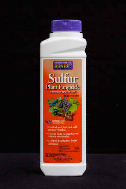 Micronized Sulfur