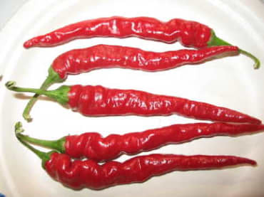 Long Red Narrow Cayenne