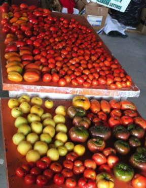 Heirloom Tomato Mix