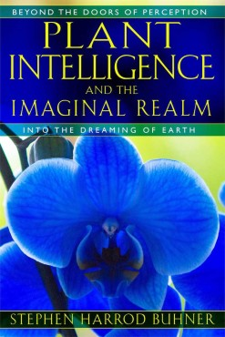 Plant Intelligence and the Imaginal Realm: Into the Dreaming of Earth