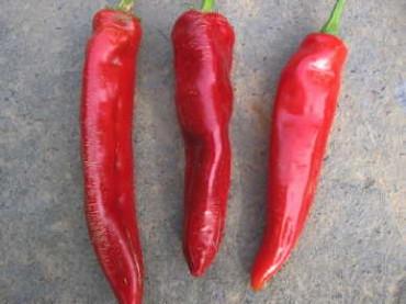 Boldog Hungarian Spice Paprika