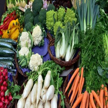 Top 20 Anti-Aging Foods That Can Help You Stay Young and Healthy