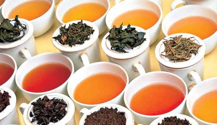 Best Healthy Teas