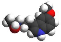 sleep hormone melatonin