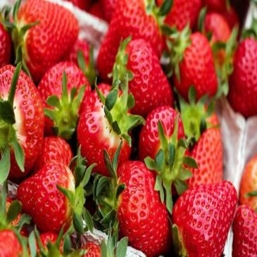 Amazing Health Benefits of Strawberries