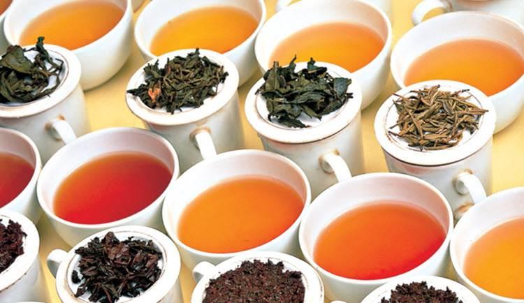 Best Healthy Teas