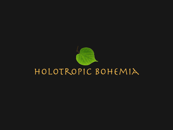 Double Holotropic Breathwork Weekend in Víska village, November 5th - 8th, 2020