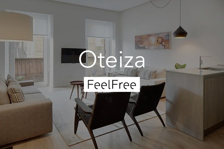 Imagen de Oteiza