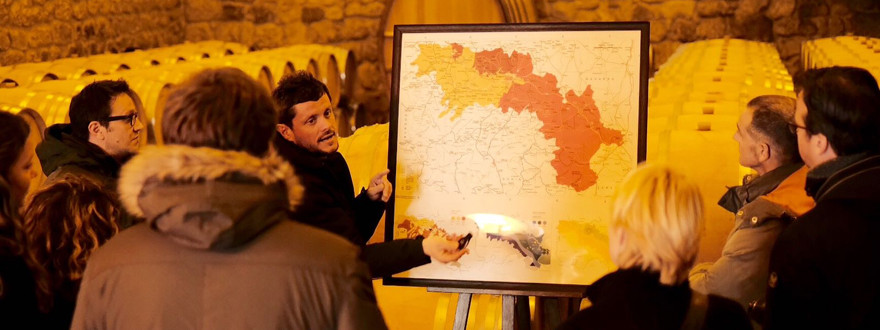 Rioja tour: premium wine tasting 1