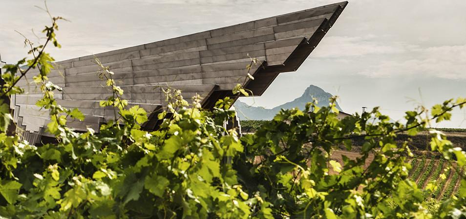 Rioja tour: premium wine tasting 4