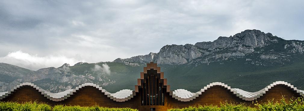 Rioja tour: premium wine tasting 5