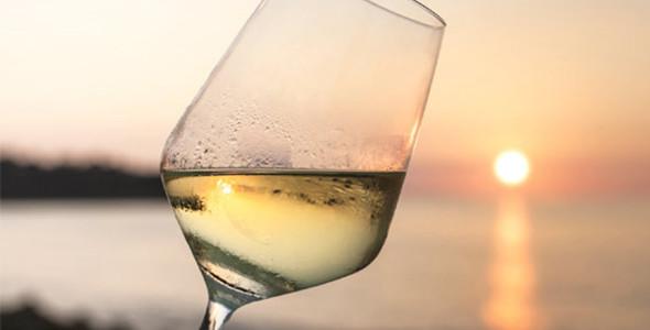 Fromage idiazabal et vin blanche txakoli 4