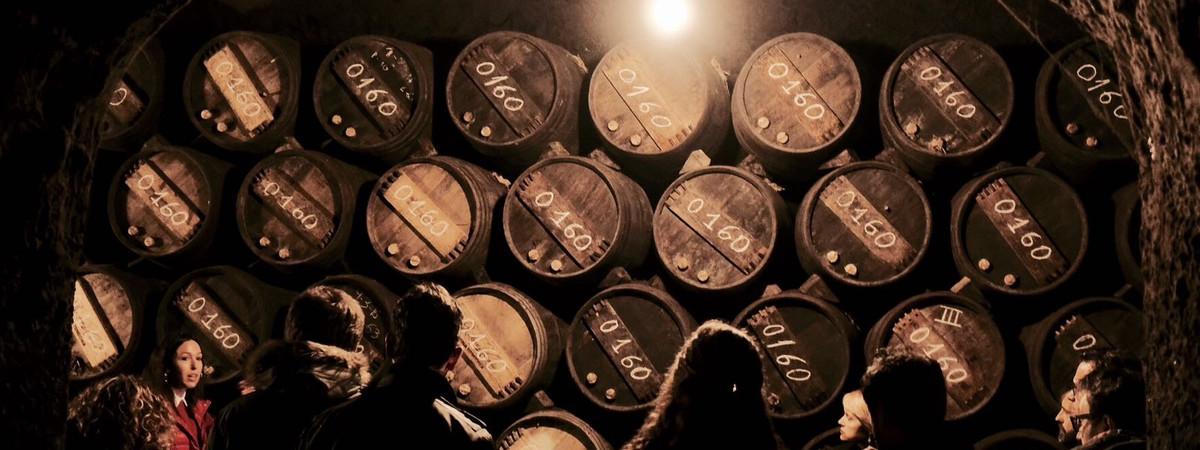 Visita cultural por La Rioja 4